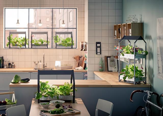 hydroponic-gardening-krydda-vaxer-series-kit-ikea-sustainable-homeware-design-interior-indoor_dezeen_1568_10